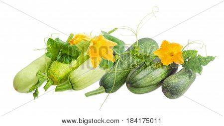 Several fresh vegetable marrows and zucchini with stalks leaves tendrils and flowers on a light background