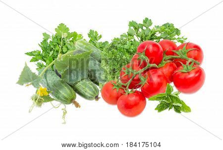 Several fresh cucumbers with creeping stem with the leaves and flower branches of the red tomatoes and bundles of the parsley and twigs of the green basil on a light background
