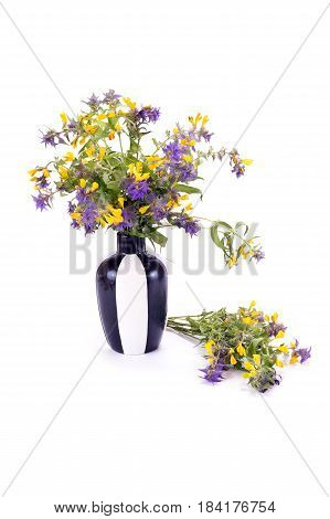 Bouquet of flowers Ivan-da-Marya in a vase isolated on white background