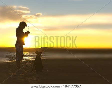sihouette of dog and host on the beach