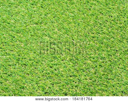 empty green soccer field or green turf background