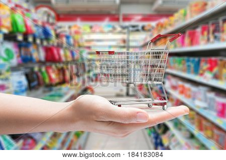 hand holding shopping cart with supermarket background
