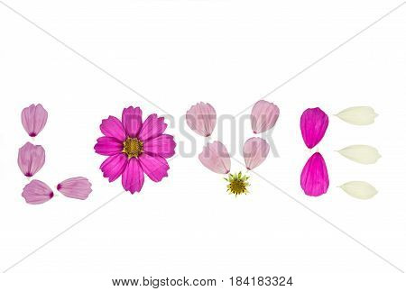 cosmos flower petals arranged to love letters on white background