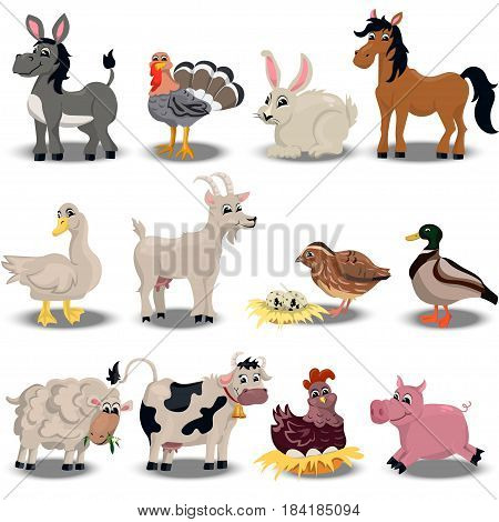 Trendy vector set with cute pink pig, goose, sheep, cow. horse, duck, quail, donkey and others farm animals set