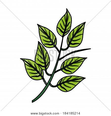 color blurred stripe image realistic branch with ramifications and leaves vector illustration
