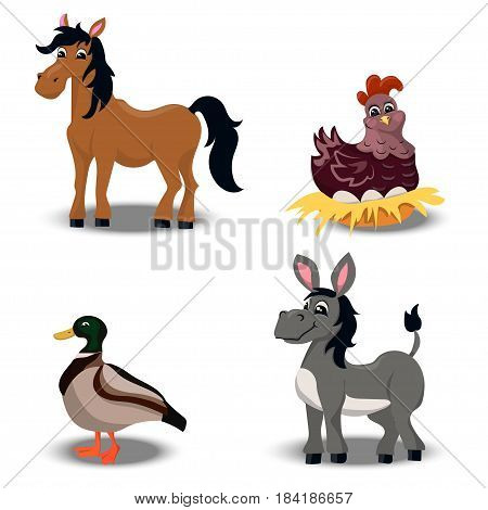 Trendy vector set with cute horse, donkey, quail and hen. farm animals set