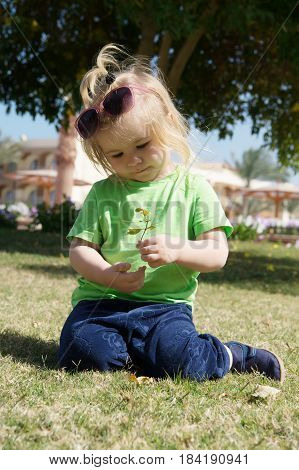 small baby boy or cute child with adorable face and blonde hair in shirt sunglasses and pants sitting on green grass playing with leaves sunny outdoor on natural background