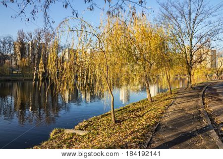 Kiev Ukraine. Autumn landscape. City park lake.