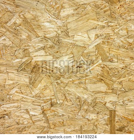Wood sawdust texture - Ecological Background texture