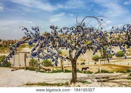 Goreme landscape, Cappadocia, Turkey. Tree with popular Turkish souvenir.