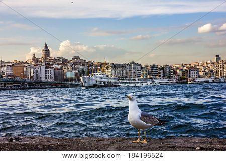 ISTANBUL TURKEY - Bosporus seafront Istanbul Turkey