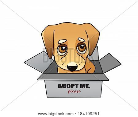 Dog adoption concept, small puppy in a box isolated on white vector illustration