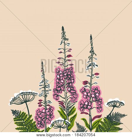 Card with forest and meadow plants. Angelica, fern, fireweed. Flowering plants. Summer theme. Vector illustration.