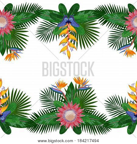 Tropical double seamless border with flowers, leaves and butterfly. Tropic floral composition with place for text on white background. Jungle textile print with protea.