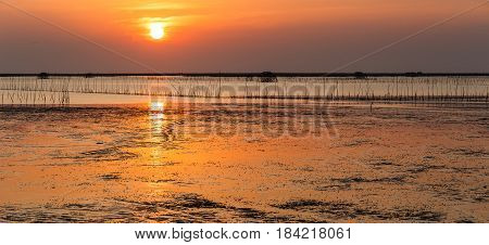Panorama Sunset Over Sea Shore And Wetland With Silhouette Shell Farm