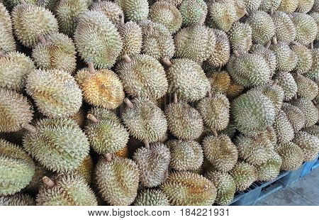 durian fruit The Texture of Durian in the market