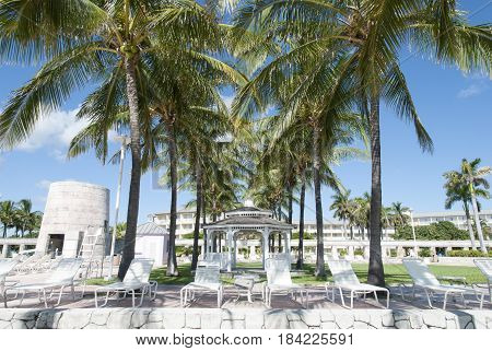 The view of palm tree alley with gazebo in the middle in one of Freeport town resorts on Grand Bahama Island.