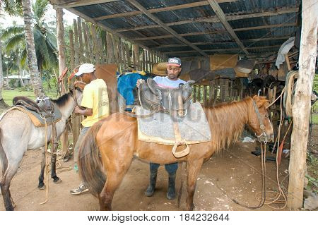 People Preparing Horses For Tourist Trip