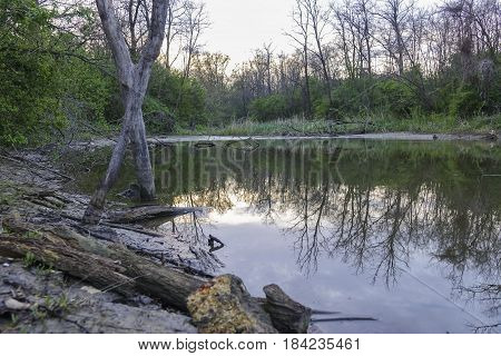 Wild Untouched Lake Shore In The Evening In The Spring