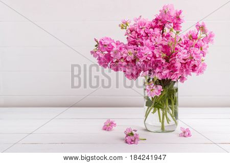 Bouquet of fragrant pink stock flowers matthiola in a vase