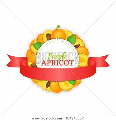 Round frame composed of ripe apricots fruit and red ribbon. Vector card illustration. Circle apricot label. Peach fruits for packaging design of healthy food, jam, fruit marmalade, juice, smoothies.