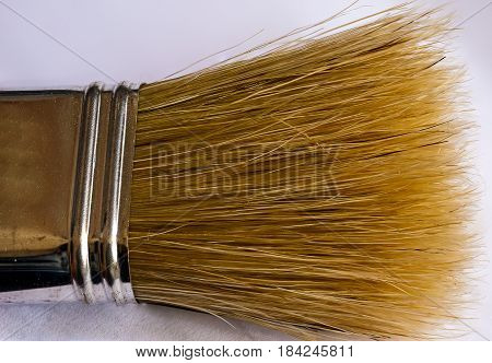 extreme close up of old paint brush bristles