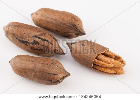 whole pecan nuts isolated on white background