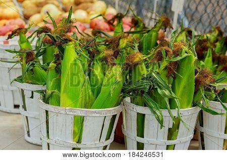 sale of fresh corn on the farmer's market in baskets