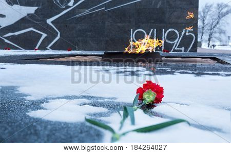 Carnation flower assigned to eternal flame in memory of soldiers who died during the Second World War. Kremlin Nizhniy Novgorod Russia