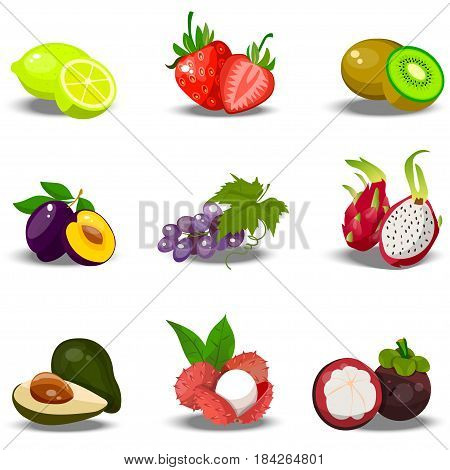 Very high quality original trendy vector set of realistic juicy fruits. plime, strawberry, kiwi, plum, grape, dragonfruit, lychee, Fully editable vector