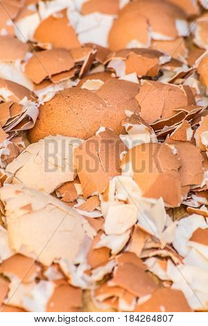 ​A lot of broken eggshells leftovers of boild eggs