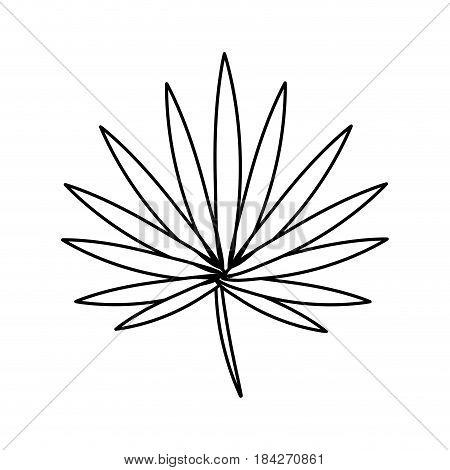 line tropical plant with leaves in the botanic forest, vector illustration
