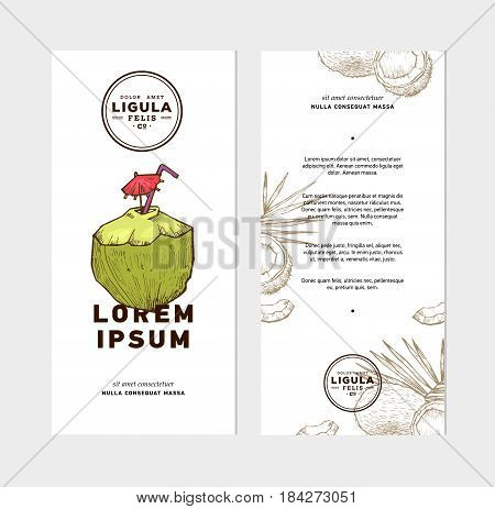 Sketch vector tropical food illustration. Coconut nut vintage design template. Botanical fruit. Engraved coconut. Banner or flyer template.