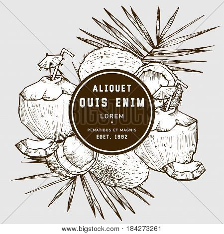 Sketch vector tropical food illustration. Coconut nut vintage design template. Botanical fruit. Engraved coconut with template design label