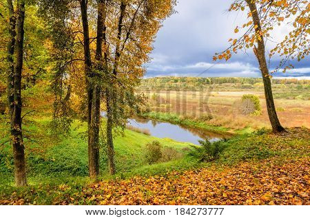 Autumn forest landscape -yellowed autumn trees near the forest river and view at the autumn field. Autumn view of the valley of Soroti river, Pushkinskiye Gory, Russia.Cloudy autumn background -autumn forest nature with fallen autumn leaves on the ground