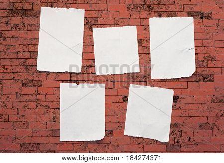 Blank Torn Scraps Of Paper