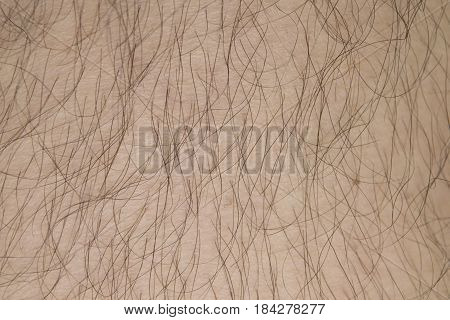 real human skin with hair texture background.
