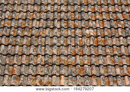 Clay tiled roof top pattern in Serpa village, Portugal
