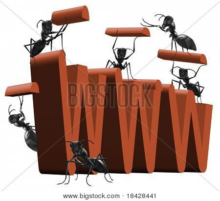 website building web site web page development WWW under construction by ants big red 3D word insects building letters red on white isolated web building internet site