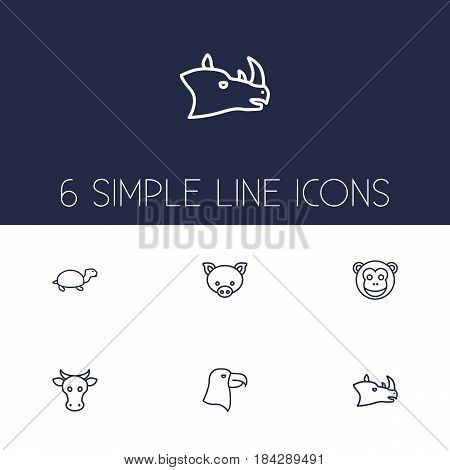 Set Of 6 Beast Outline Icons Set.Collection Of Eagle, Monkey, Pig And Other Elements.