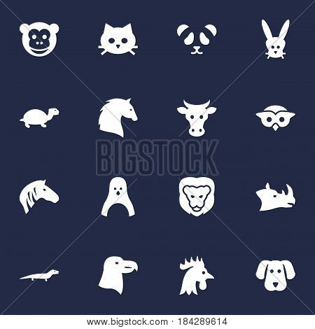 Set Of 16 Beast Icons Set.Collection Of Tortoise, Rhinoceros, Steed And Other Elements.