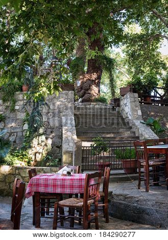 Traditional Greek tavern with wooden table and chairs located under green trees on Crete island, Greece