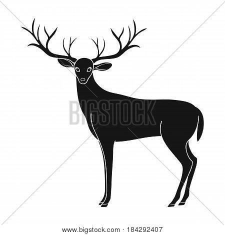 Deer with big horns.Animals single icon in black style vector symbol stock illustration .