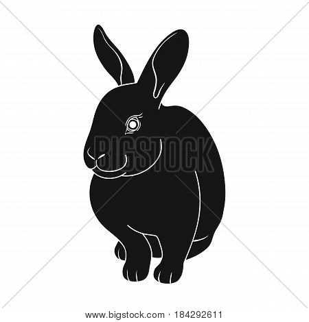 Gray rabbit.Animals single icon in black style vector symbol stock illustration .