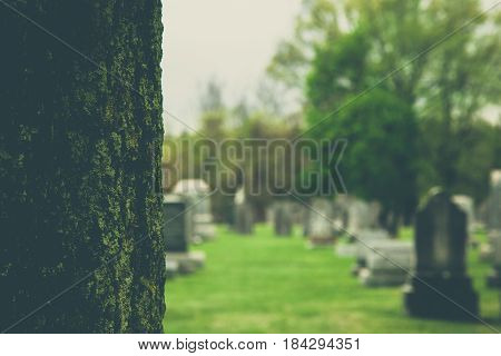 Old Tombstones In Cemetery