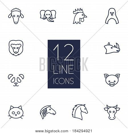 Set Of 12 Beast Outline Icons Set.Collection Of Sheep, Feline Bear, Horse And Other Elements.