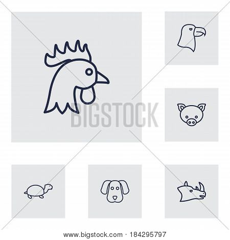 Set Of 6 Alive Outline Icons Set.Collection Of Pig, Rhino, Cock And Other Elements.