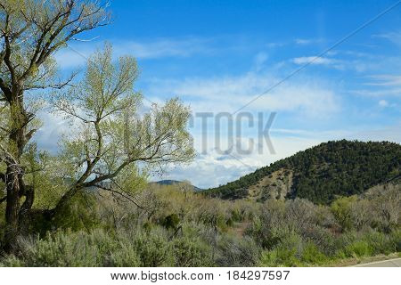 View of spring time in Durango, CO