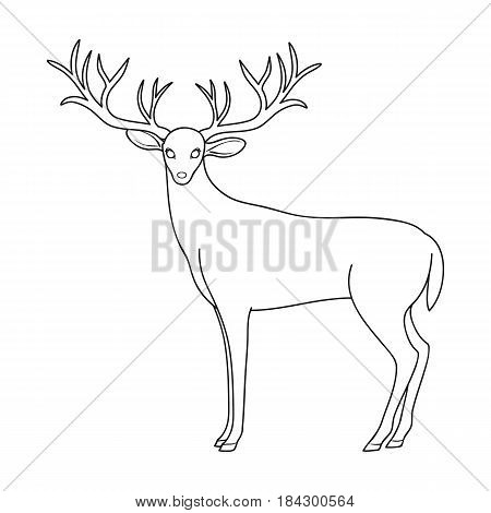 Deer with big horns.Animals single icon in outline style vector symbol stock illustration .