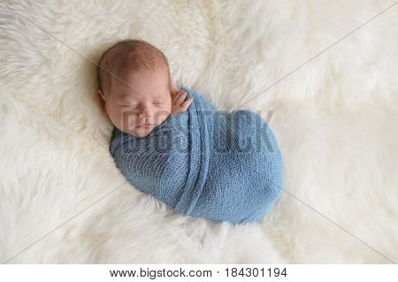 Sleeping nine day old newborn baby boy swaddled in a light blue wrap. Shot in the studio on a white sheepskin rug.